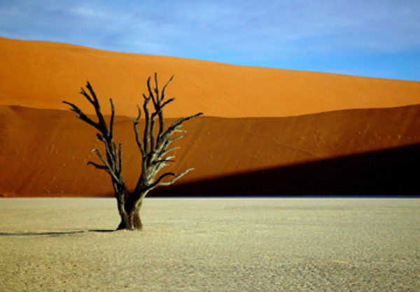 Jerry Soltys, Red Dunes of Namibia, 2004,  Digital,   35x 23 cm