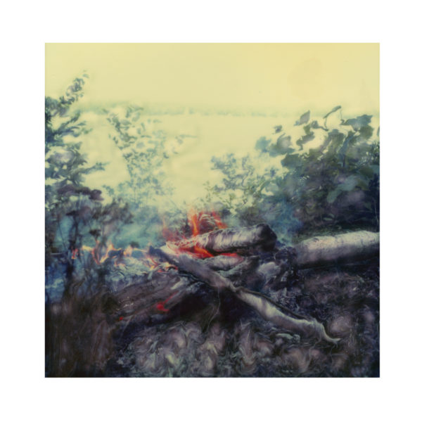 LOUISE VEZINA, BRUSH FIRE & LAKE III, 2007, archival digital print 20x20